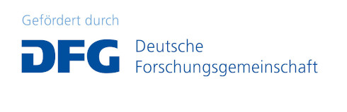 German DFG funding logo